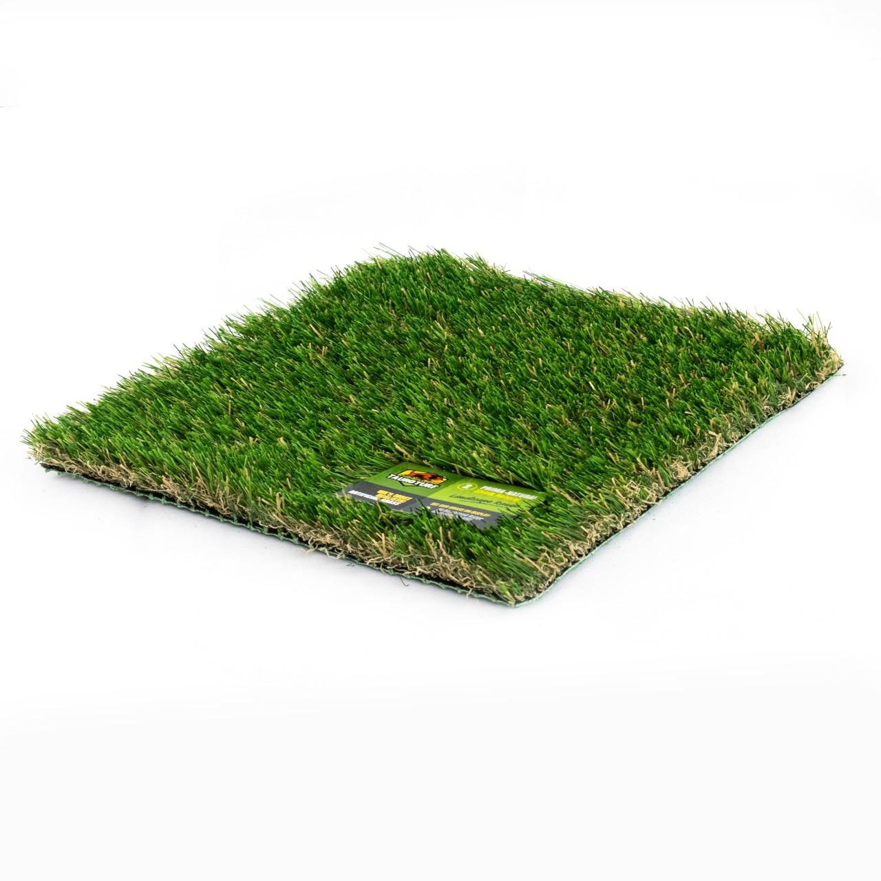 Prima Natural grass image