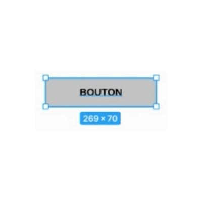 bouton selectionne