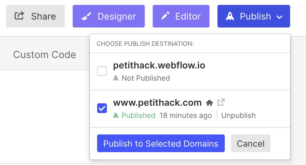 option de publication webflow