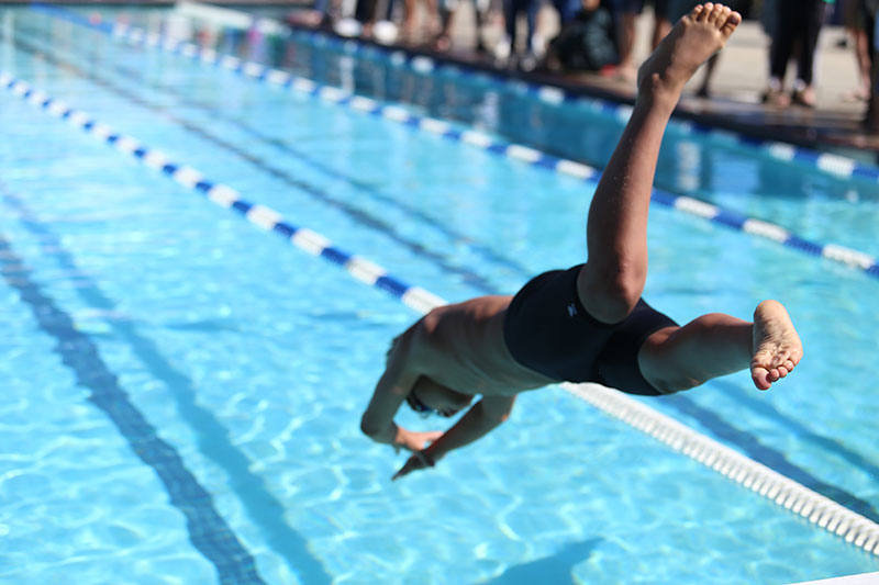 Swimmer diving in to an olympic swimming pool