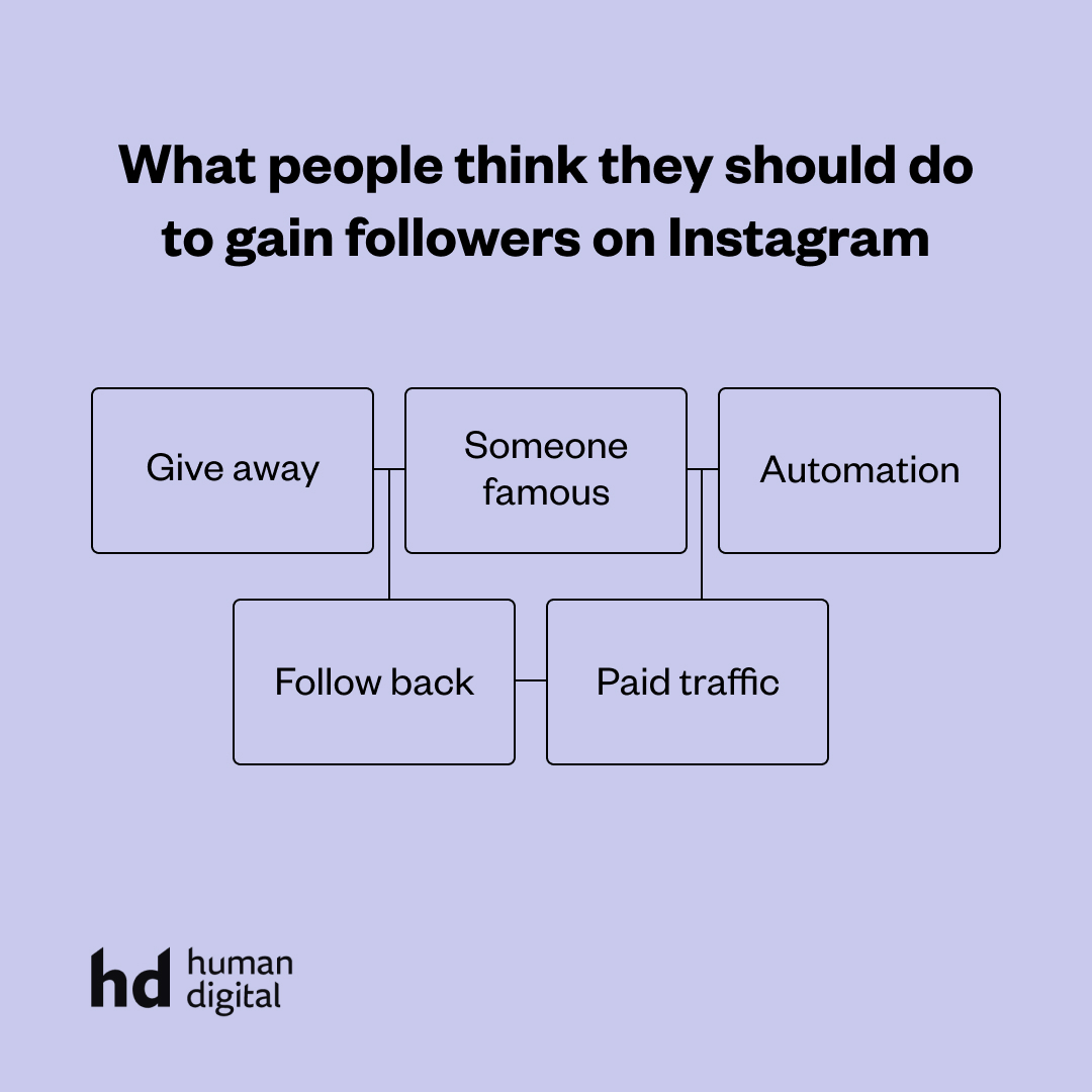 What people think they should do to gain followers on Instagram