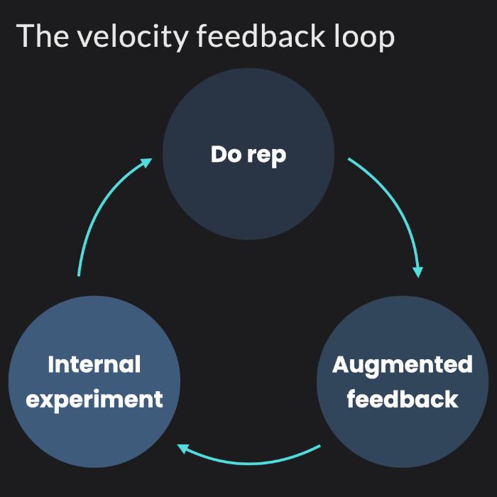 The velocity based training feedback loop