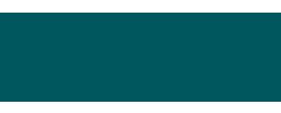 Business Insiders Logo.