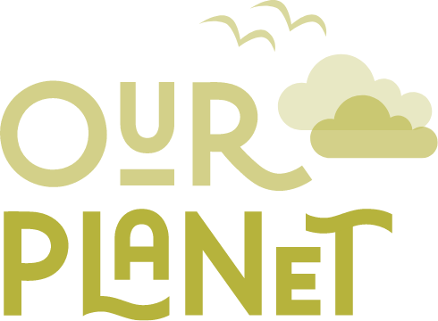 Our planet icon