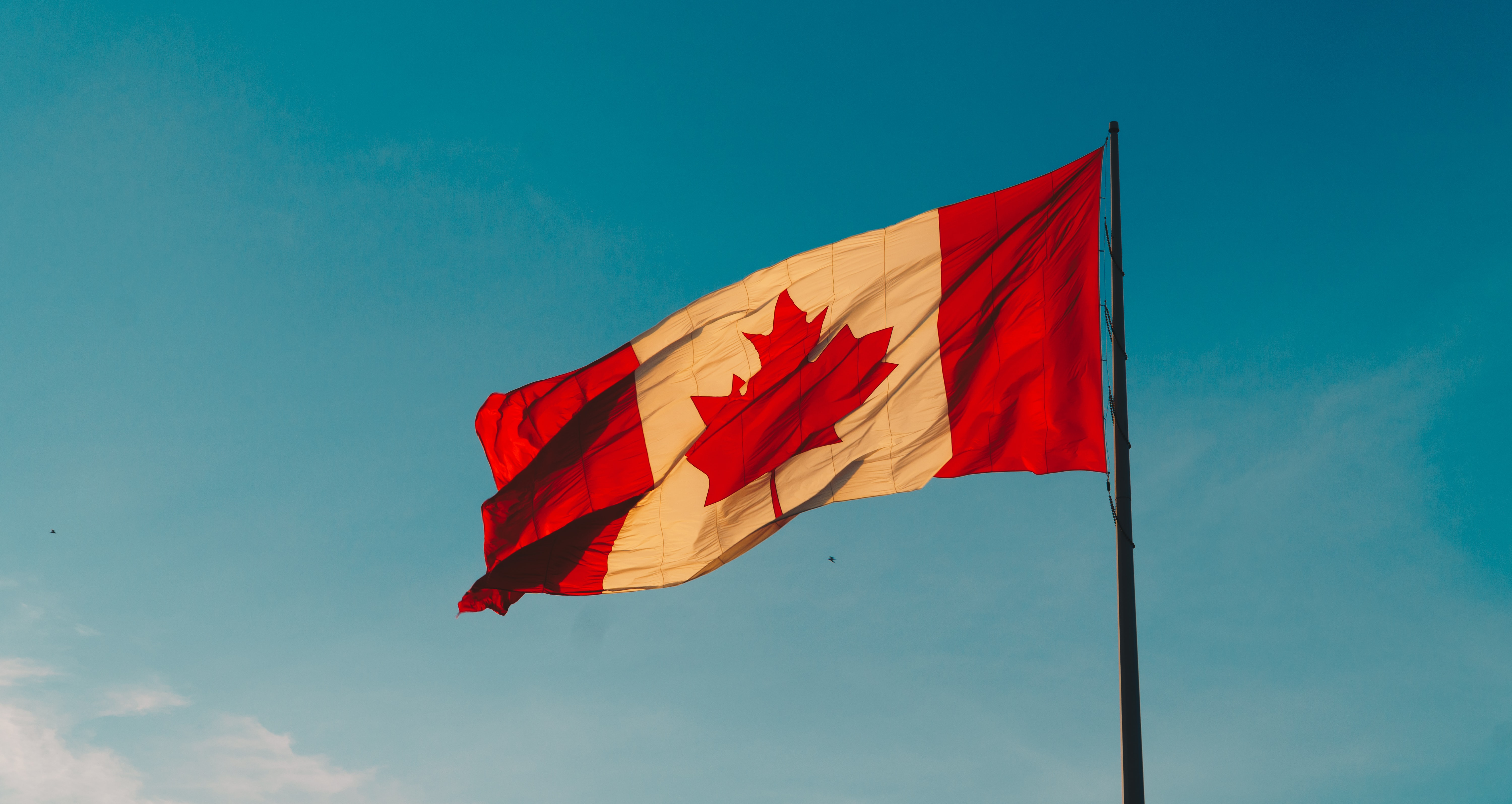 The CRA Standard Rate Remains the Same for 2021