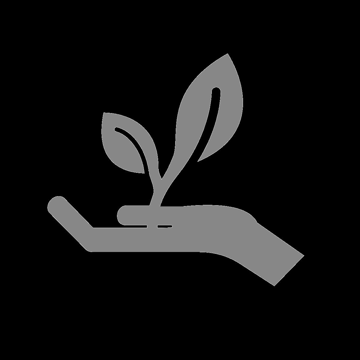 Carbon Analytics creativity social responsibility diversity sustainability