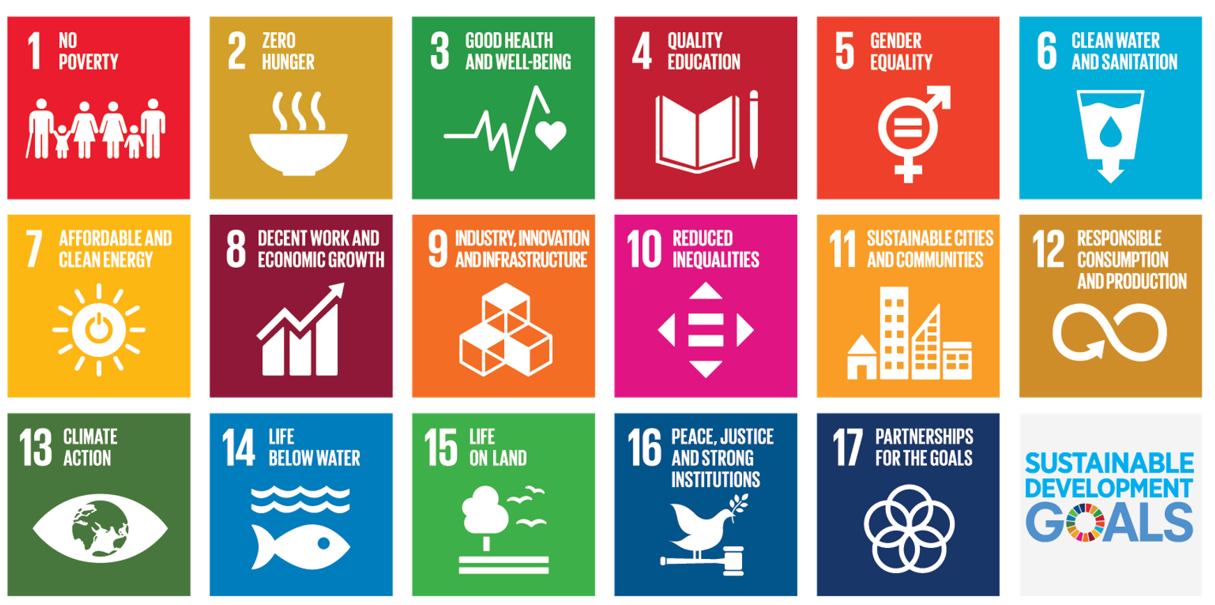 Carbon Analytics is aligned with the United Nations UN Sustainable Development Goals  SDG