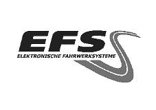 Kundenlogo EFS