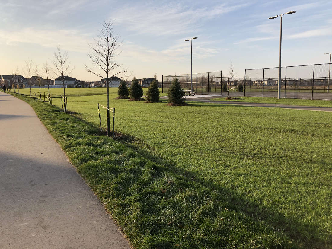 diamond jubilee park with fenced sports area in ottawa