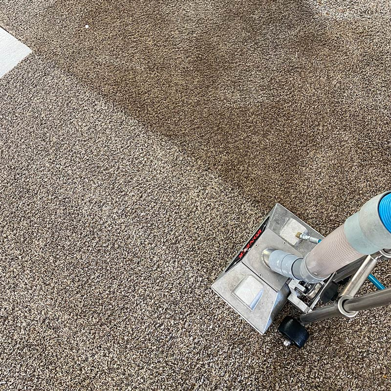 Carpet cleaning in Medford, OR