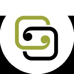 CSS Disability Action Logo