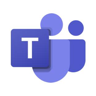 MS Team Icon