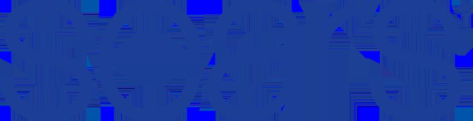 Client Logo: Sears