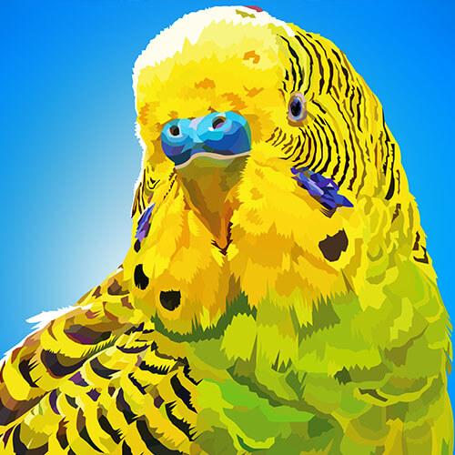 Digitale tekening van een gele parkiet