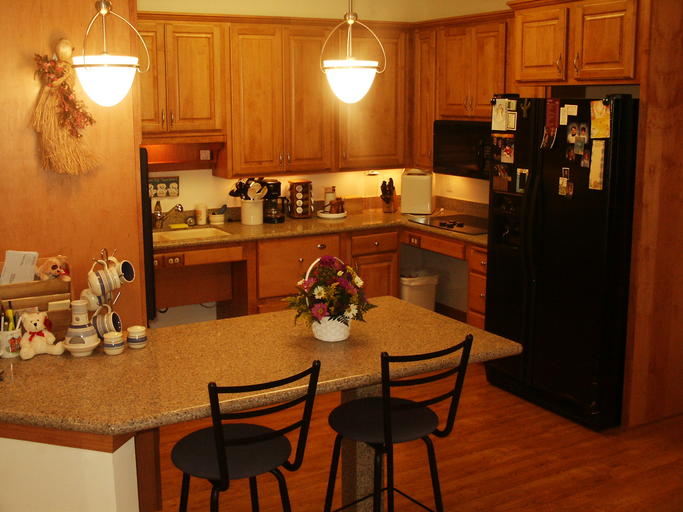 Michelle's new accessible kitchen.