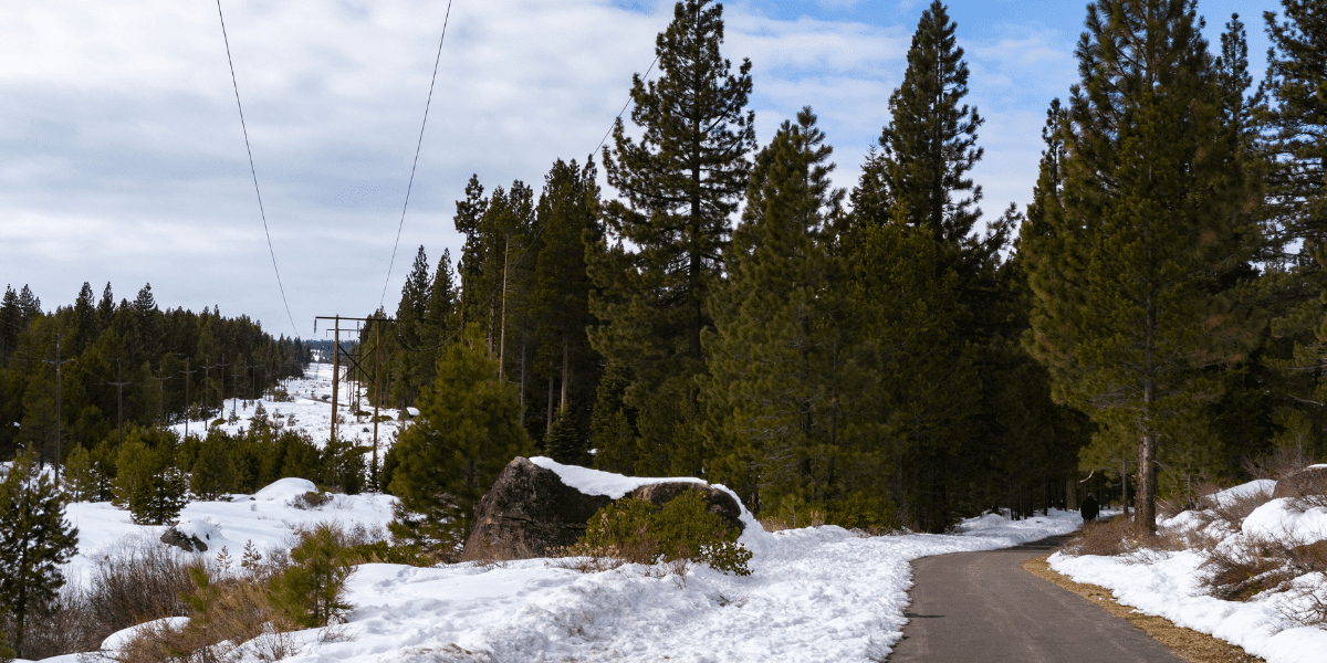 A view of an open section of the Trout Creek Trail in Truckee.