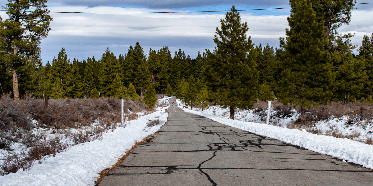 Wide view of the Martis Dam Road, a snow free winter trail in Truckee.