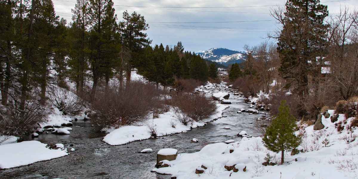 A view of the Truckee River from the pedestrian bridge on the Legacy Trail.
