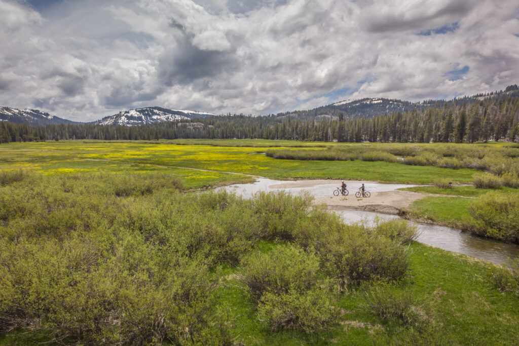 Explore Lacey Meadow on foot or bike