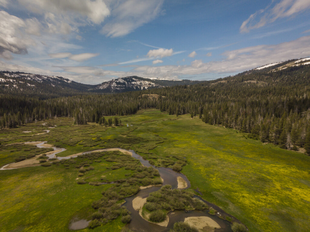 Hike Lacey Meadow in Truckee, CA