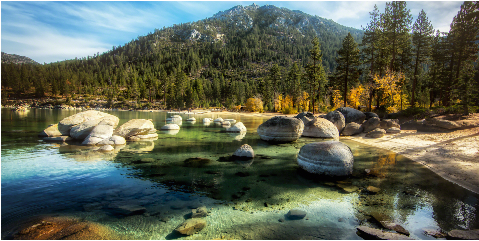 Fall colors on a Truckee-Tahoe shoreline.