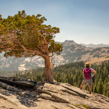 Take the Truckee-Tahoe Traveler Responsibility Pledge and be entered to win a Deuter Dirtbag.