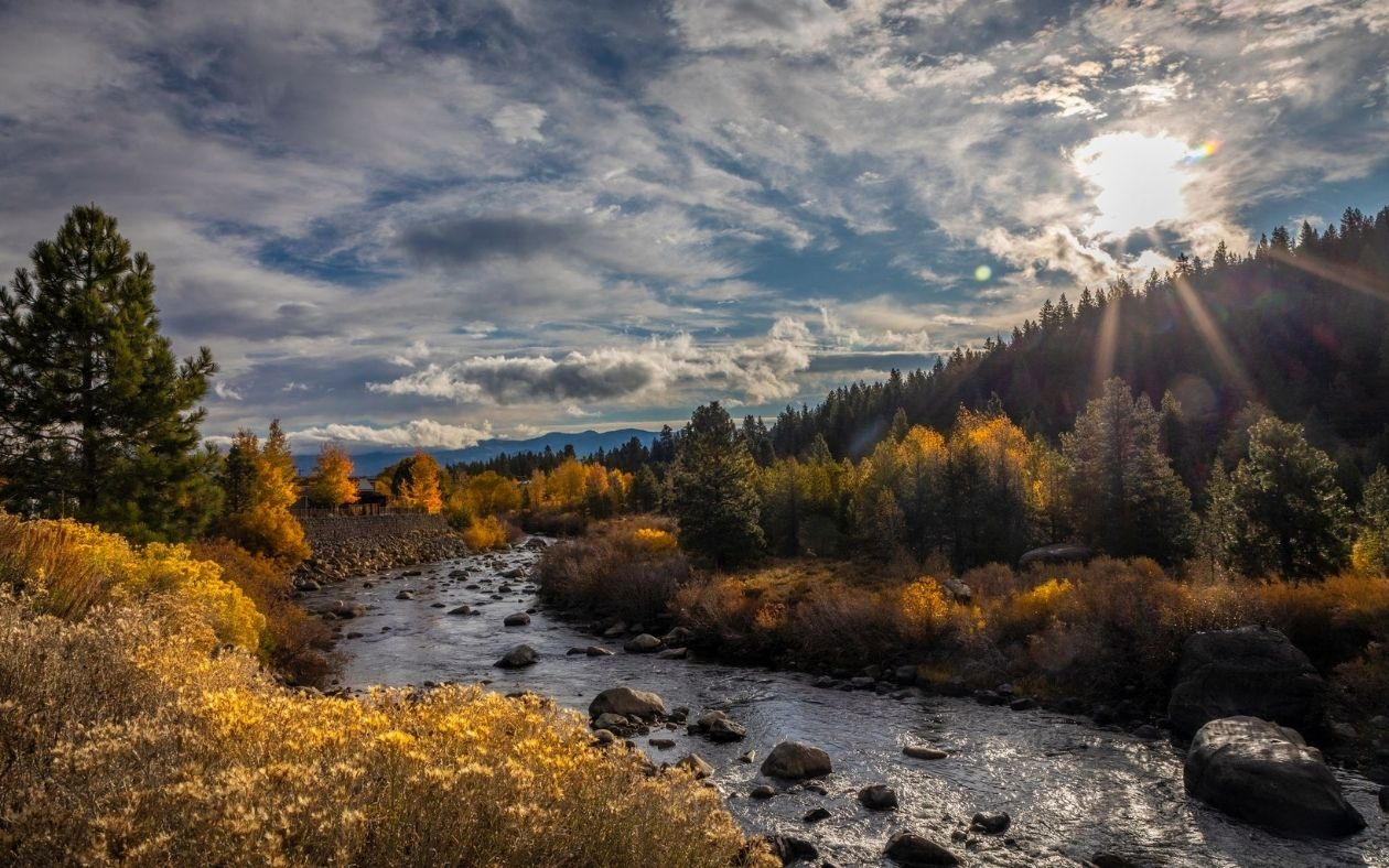 Experience the mighty Truckee River in fall.