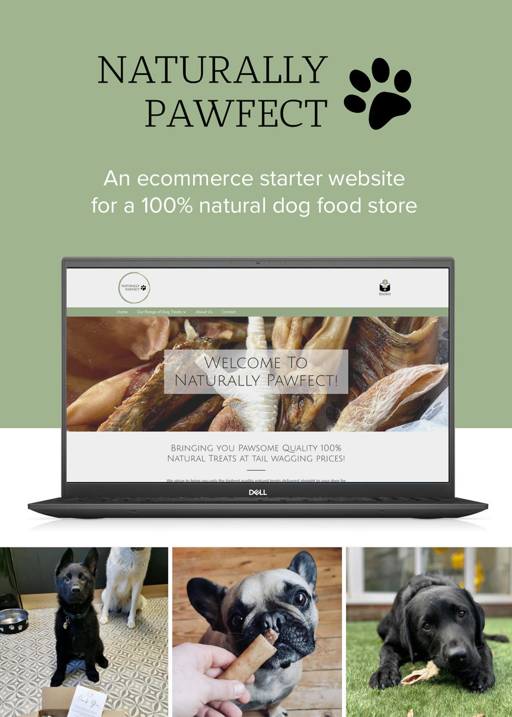 Website designed by Rugby Web Design Limited - Naturally Pawfect
