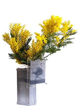 Metal mesh vase and hardware with lenticular print behind Plexiglas, Pseudonym Objects for Everyday Living.