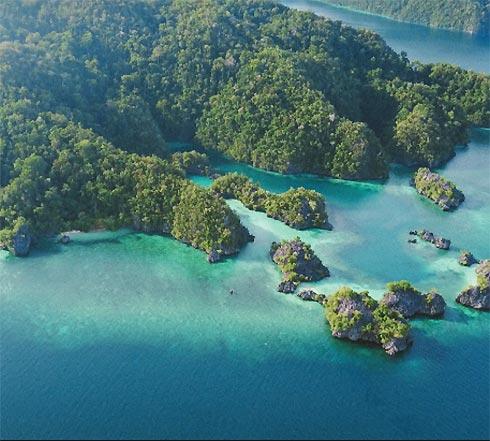 Ausschnitt einer bewaldeten Insel im Meer