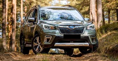 Best Tires for Subaru Forester | CarShtuff