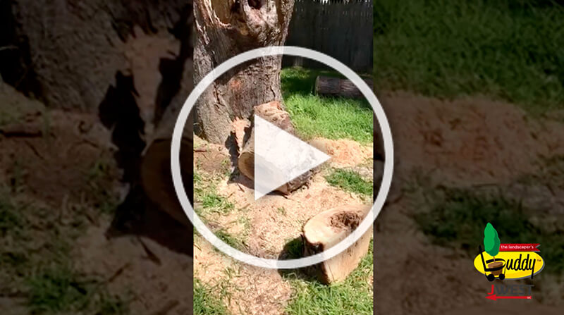 Still of a video - Landscaper's Buddy customer review; no backyard access but The Buddy can get in & out of the site easily