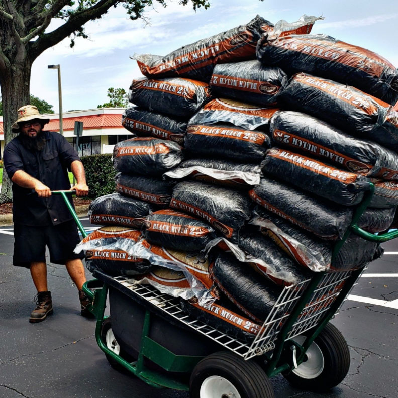 Man in hat, dark shirt/shorts + boots hauls over 20 bags of mulch in one trip with The Landscaper's Buddy + shelf attachment