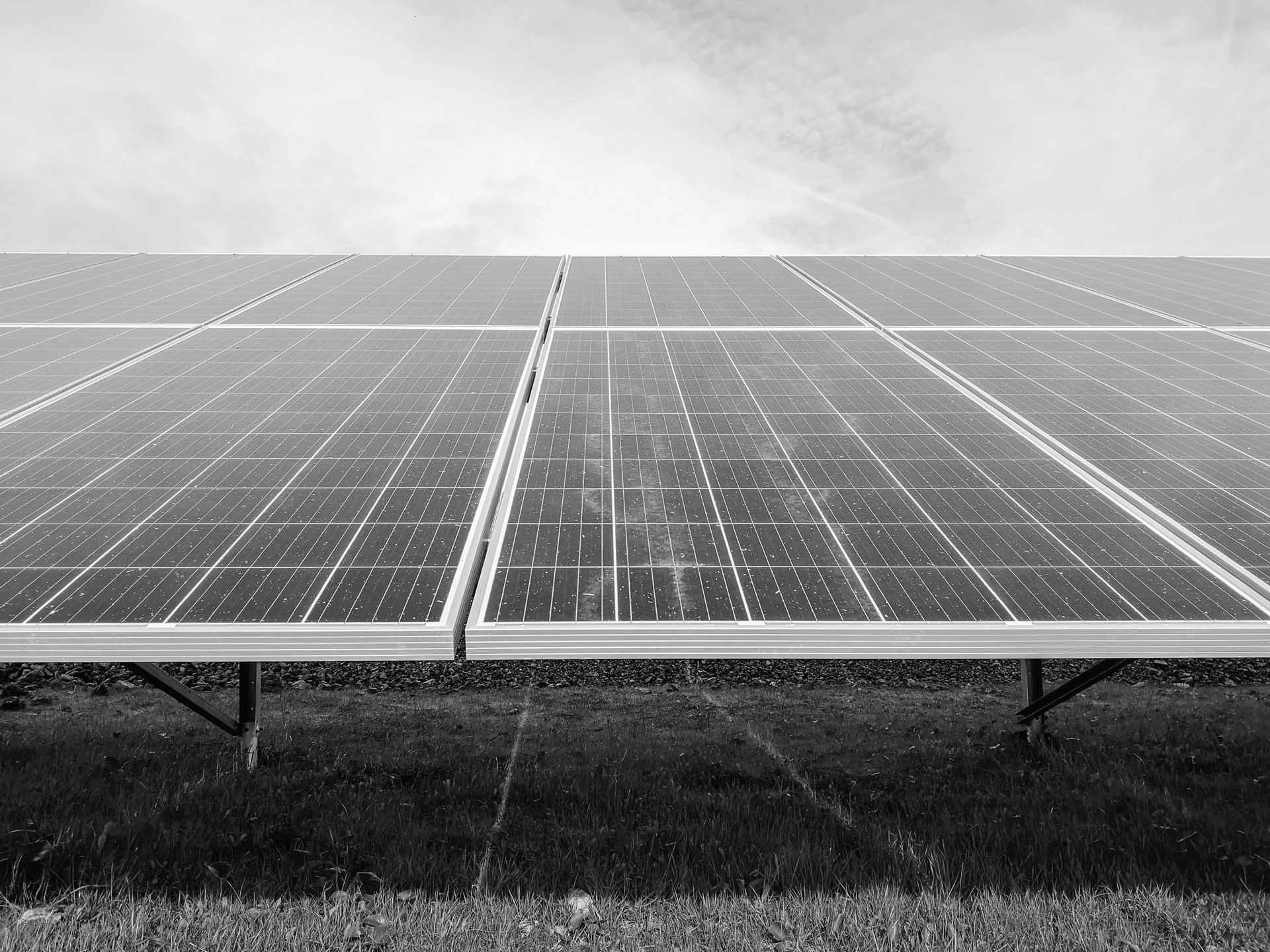Solar panels in a field.