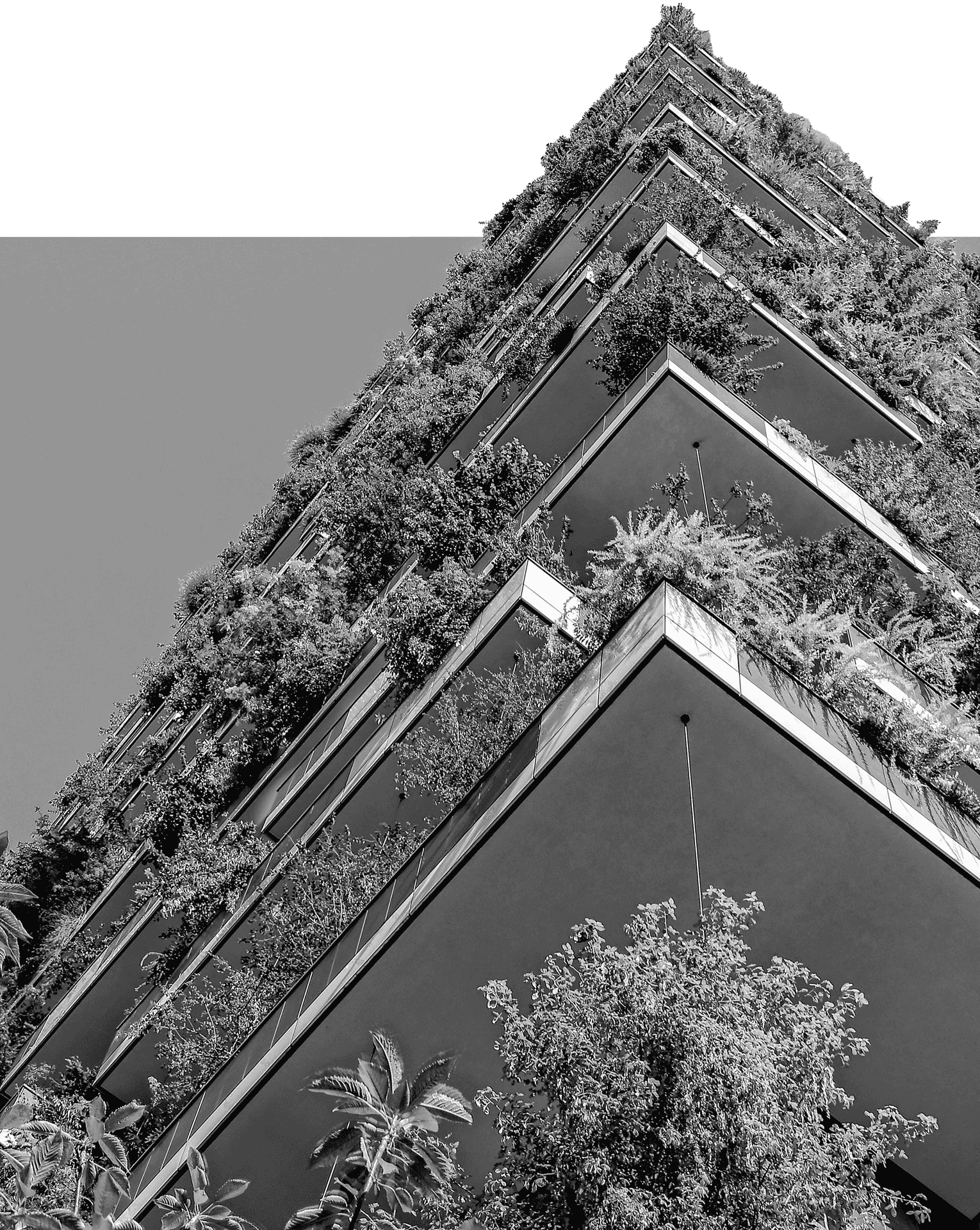 Abstract photo of a building filled with plants.