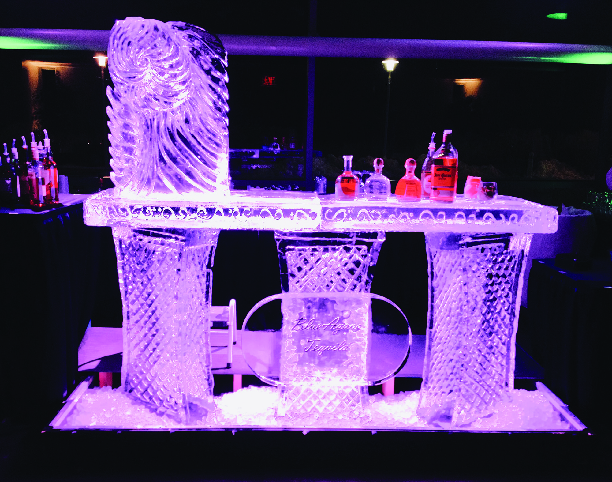 Custom Ice Sculpture Bar