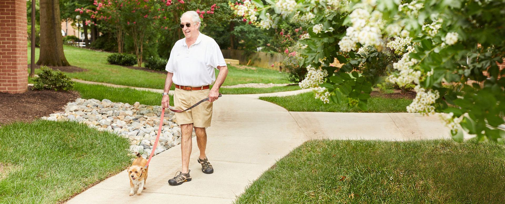 Man Dog Walking at Vinson Hall Retirement Community. McLean, VA