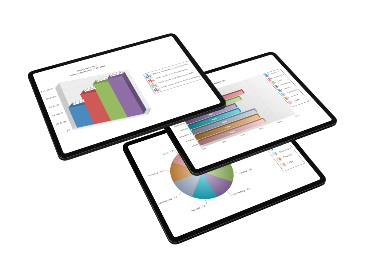 Opportunity Profile Business Report On Ipad