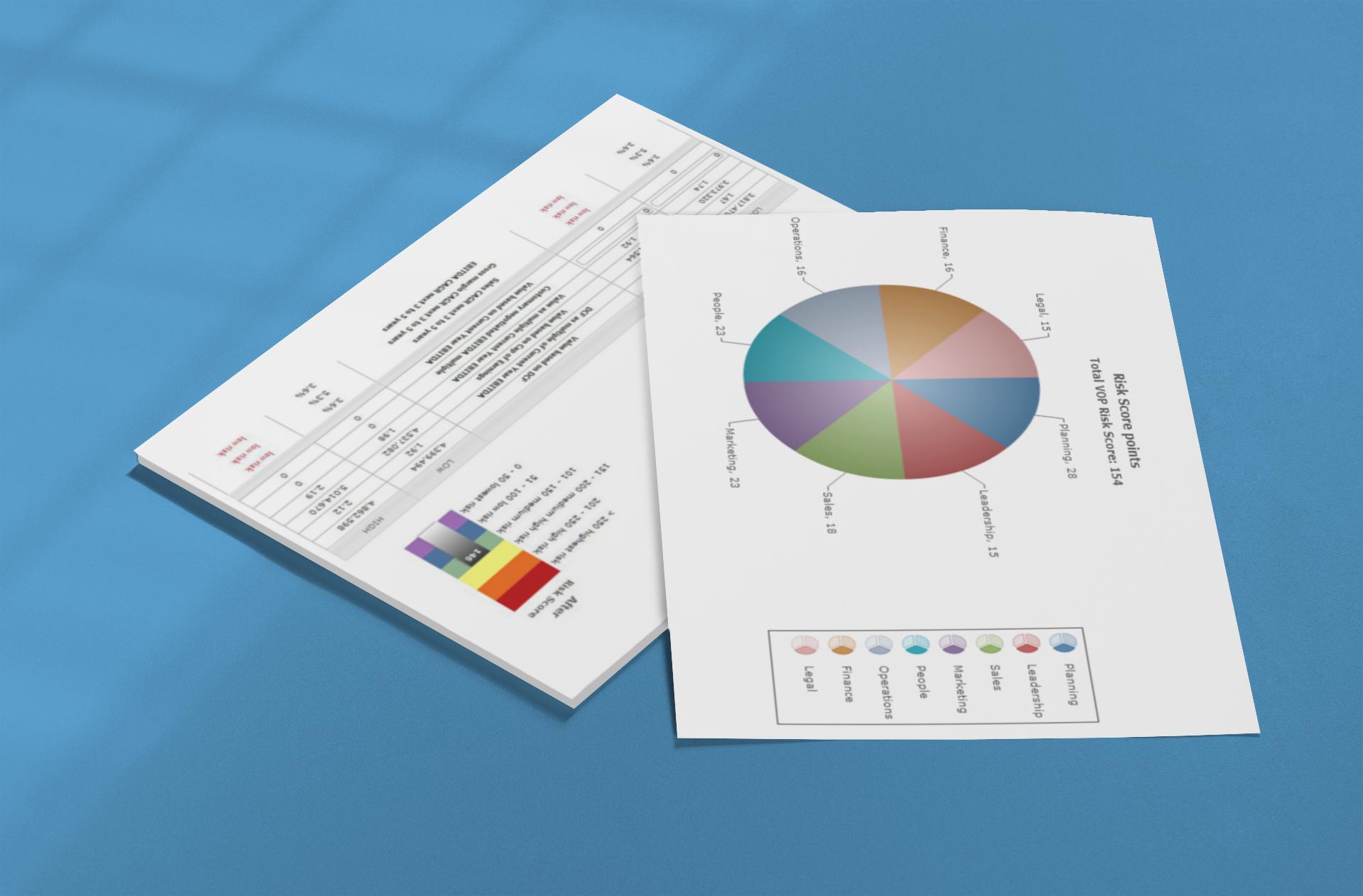 Business Risk Profile Report