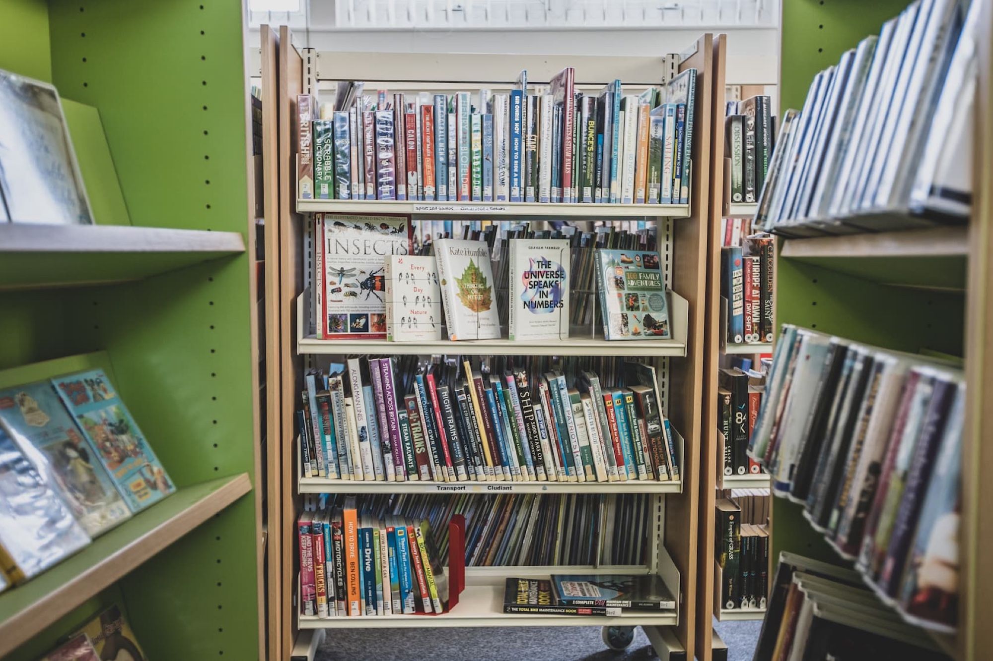 A full bookcase in the library