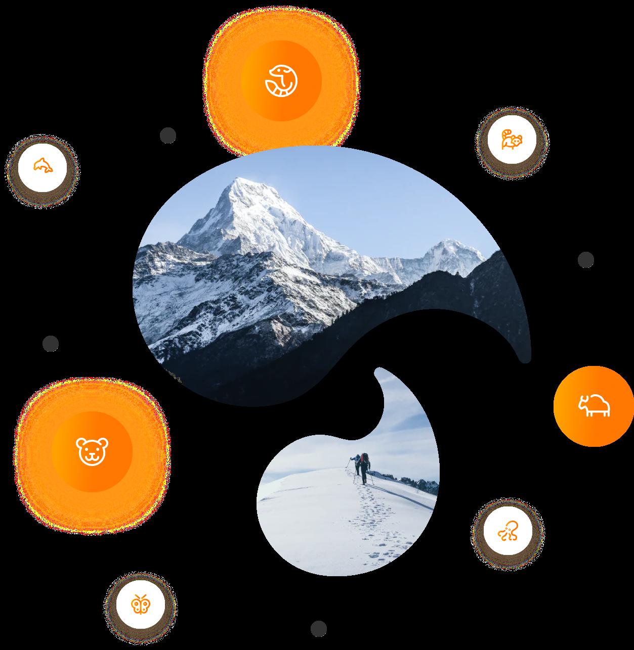Mountains inside the Tango Logo