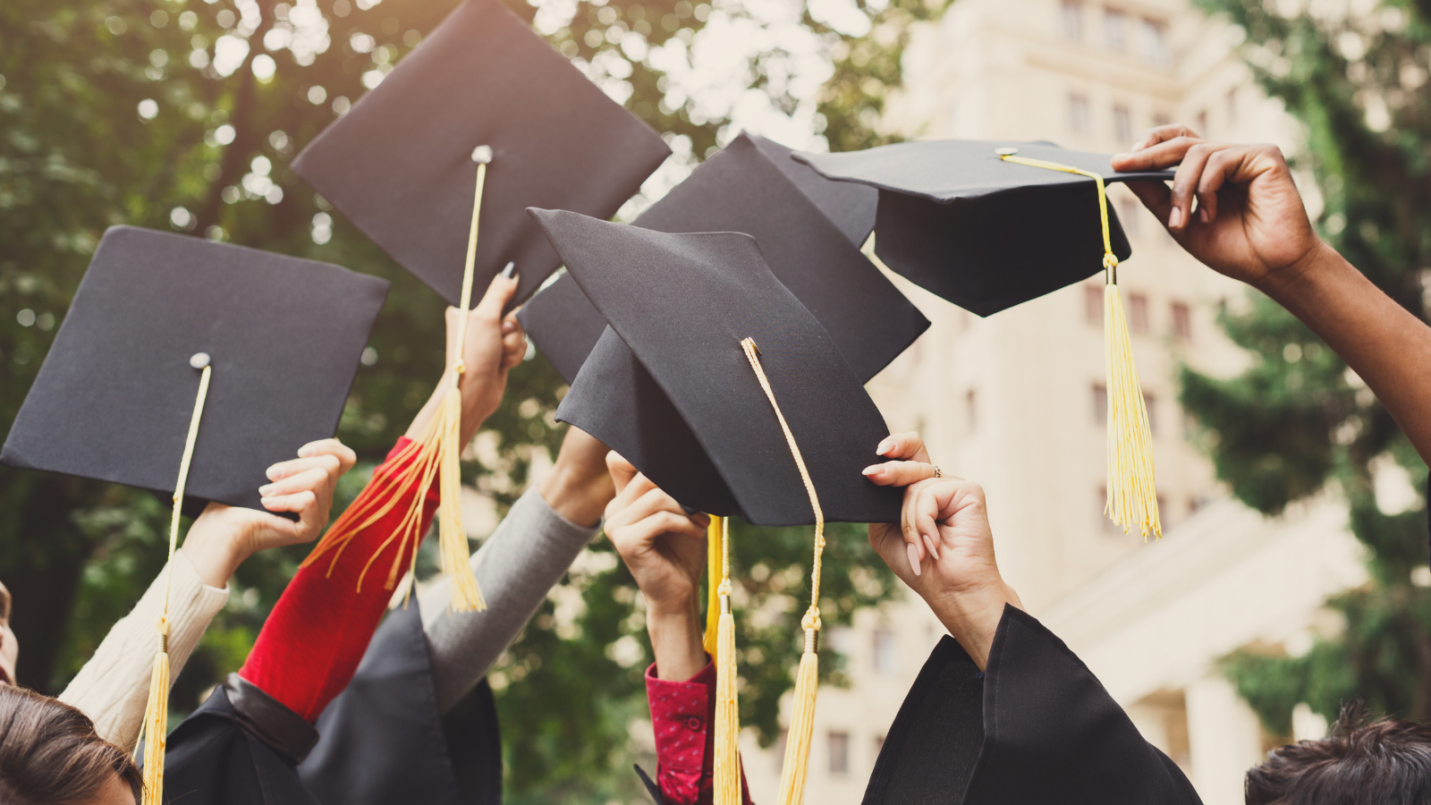 Suffolk AME Scholarships: Committed To Excellence In Suffolk County