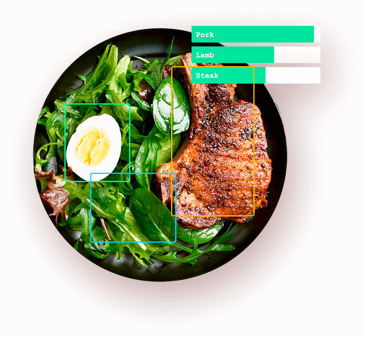 food identification
