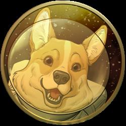 space corgi coin