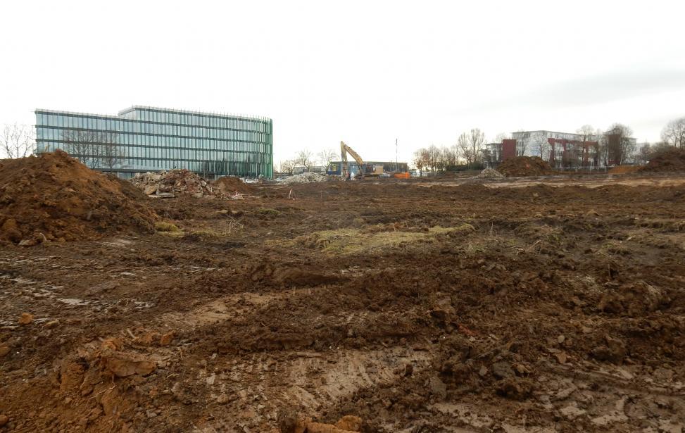 Beräumung und Baufeldfreimachung Kleingartenanlage Ludwigsburg