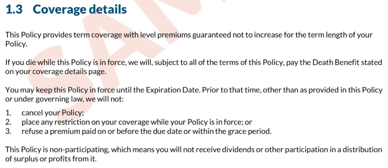 Example portion of a real term life insurance contract for article about Term Vs Whole Life insurance