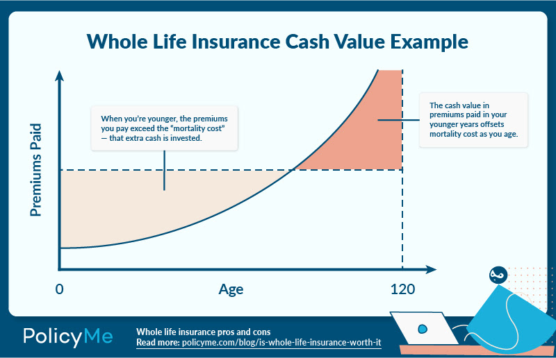 Graph detailing whole life inruance cash value for article about whole life insurance Canada
