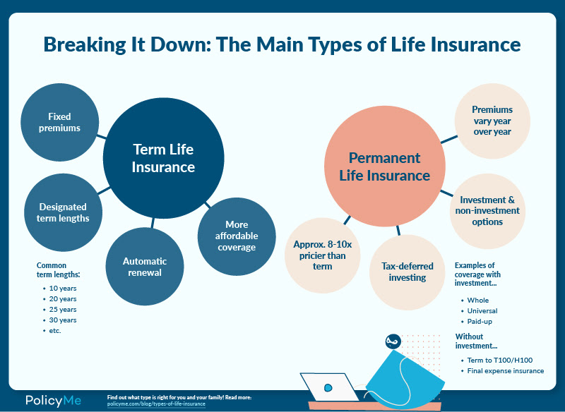 Chart breaking down the main types of life insurance for article titled What is LIfe Insurance