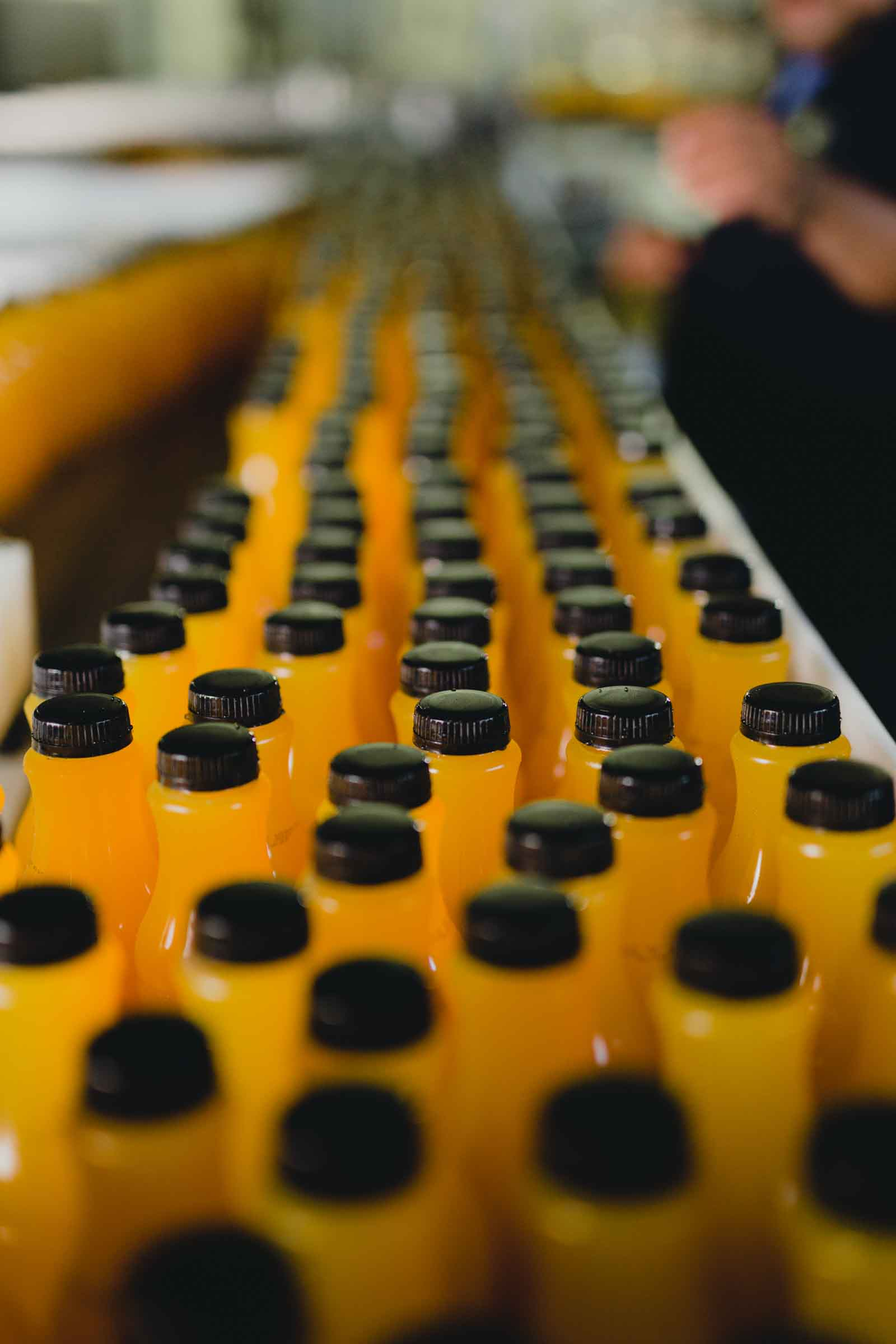 Bottles on the line in the single source supply chain at Arcadia Beverage