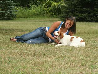 Dog that has received pet surgery near Williamston, MI